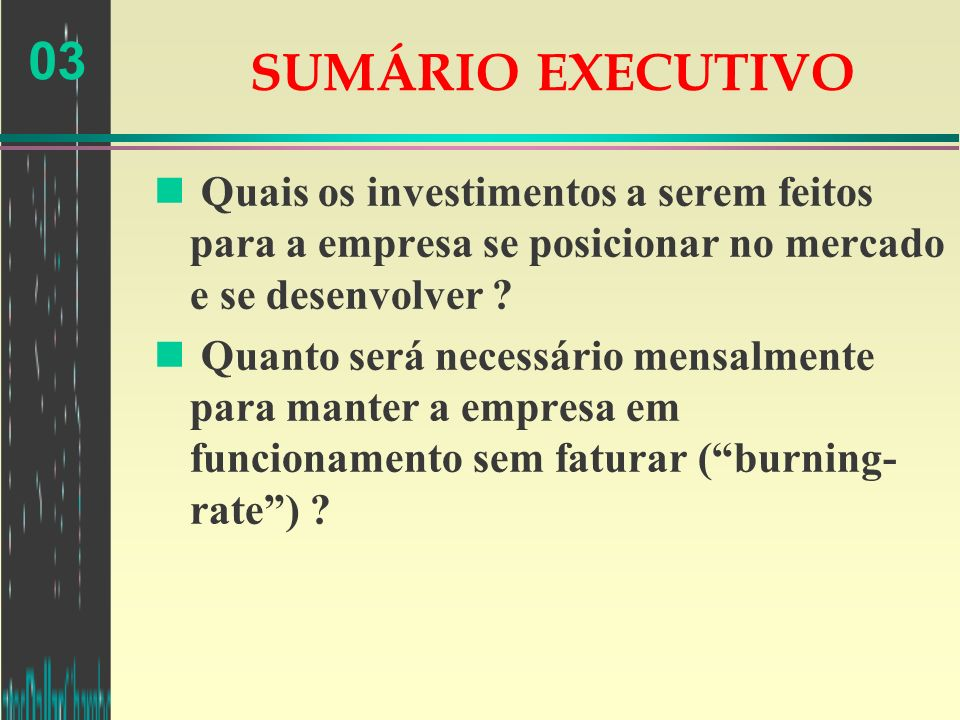 SUMÁRIO EXECUTIVO Quais os investimentos a serem feitos para a empresa se posicionar no mercado e se desenvolver