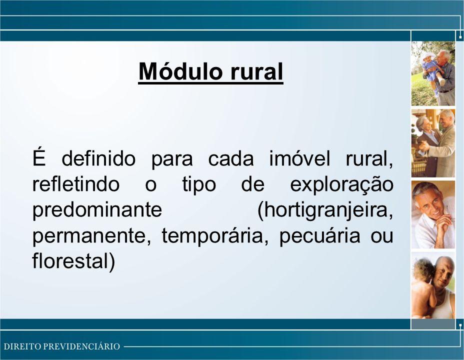 Módulo rural