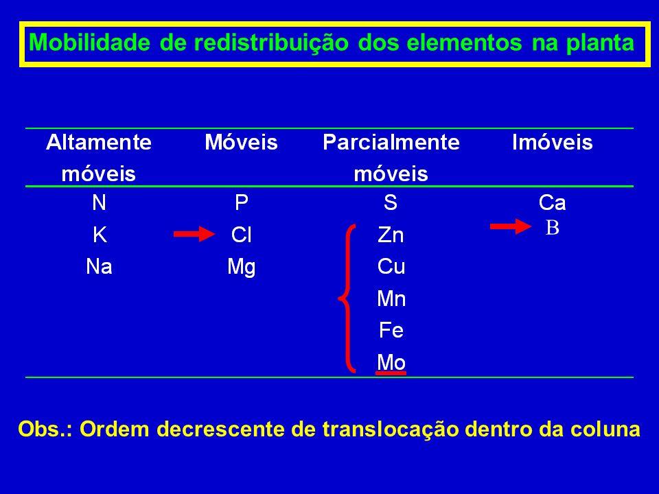 Mobilidade de redistribuição dos elementos na planta