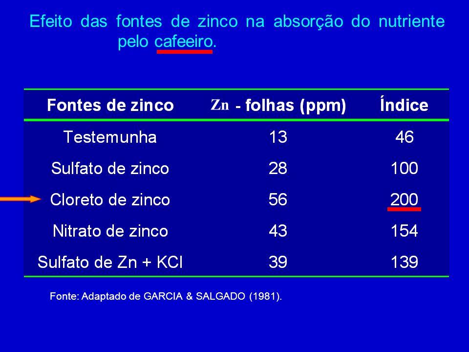 Efeito das fontes de zinco na absorção do nutriente pelo cafeeiro.