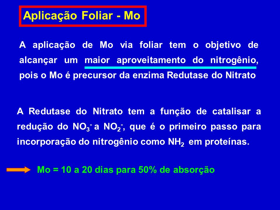 Aplicação Foliar - Mo