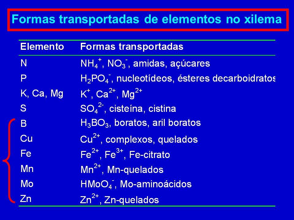 Formas transportadas de elementos no xilema