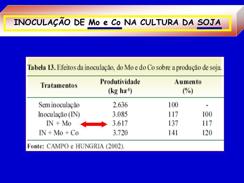 INOCULAÇÃO DE Mo e Co NA CULTURA DA SOJA