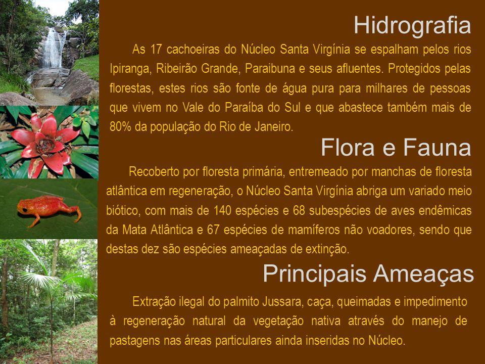 Hidrografia Flora e Fauna Principais Ameaças