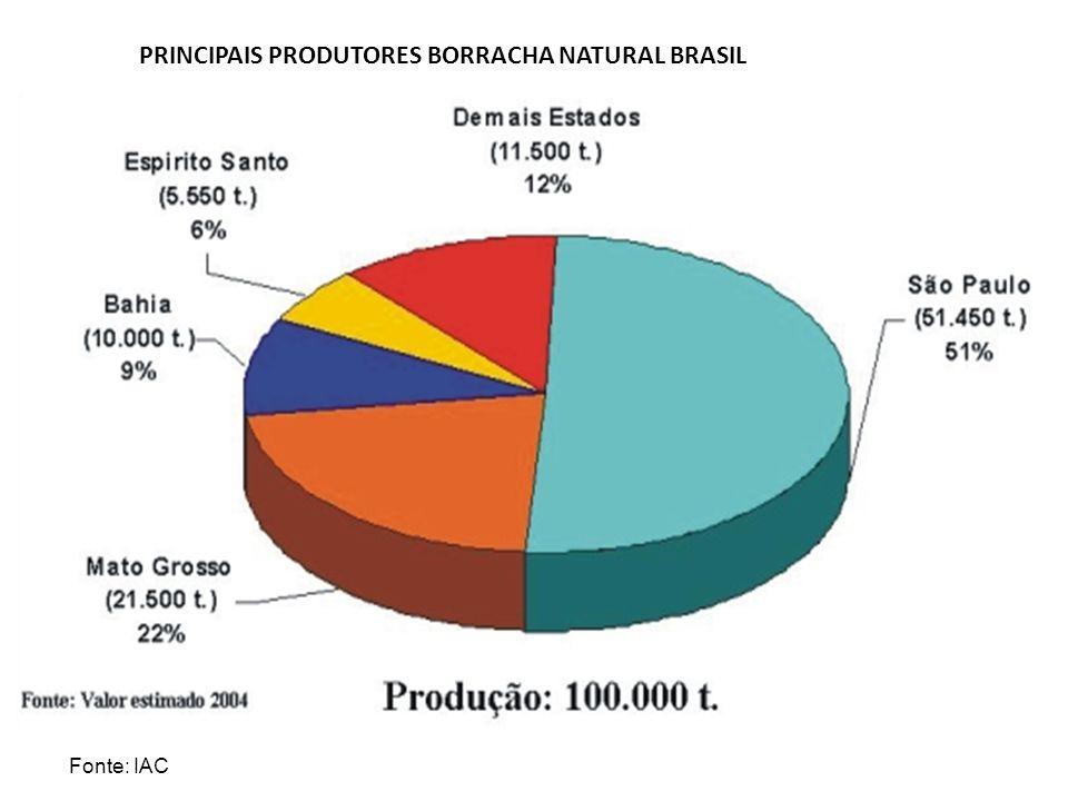 PRINCIPAIS PRODUTORES BORRACHA NATURAL BRASIL