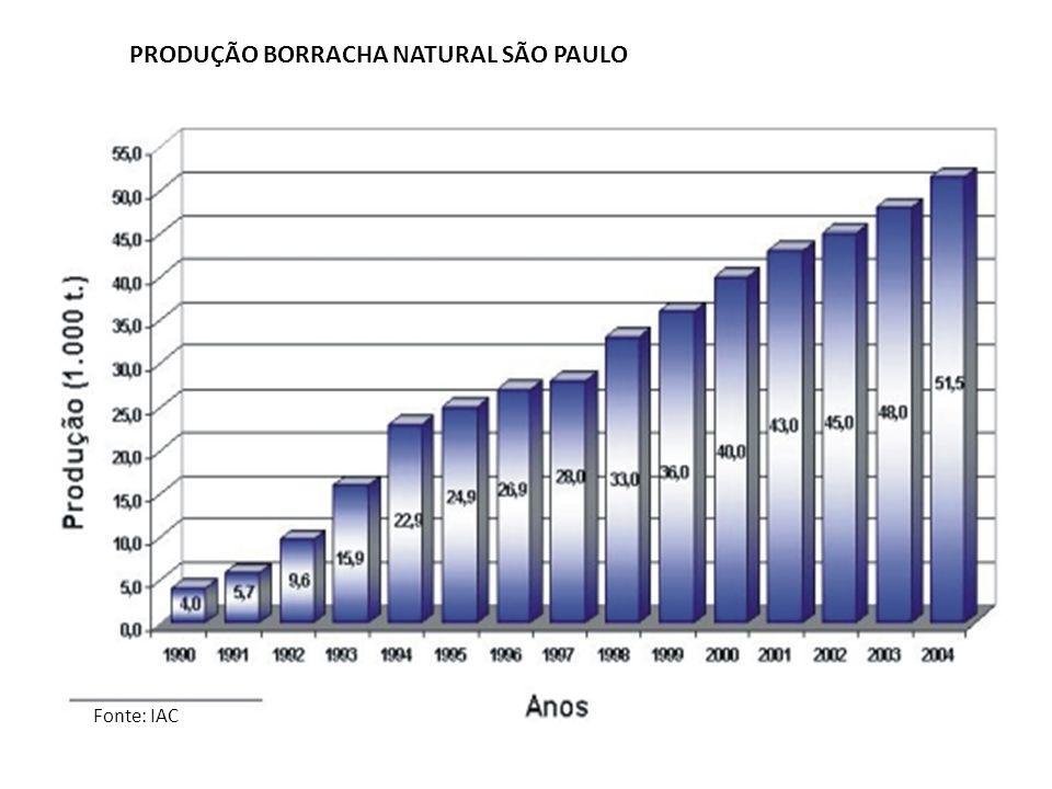 PRODUÇÃO BORRACHA NATURAL SÃO PAULO