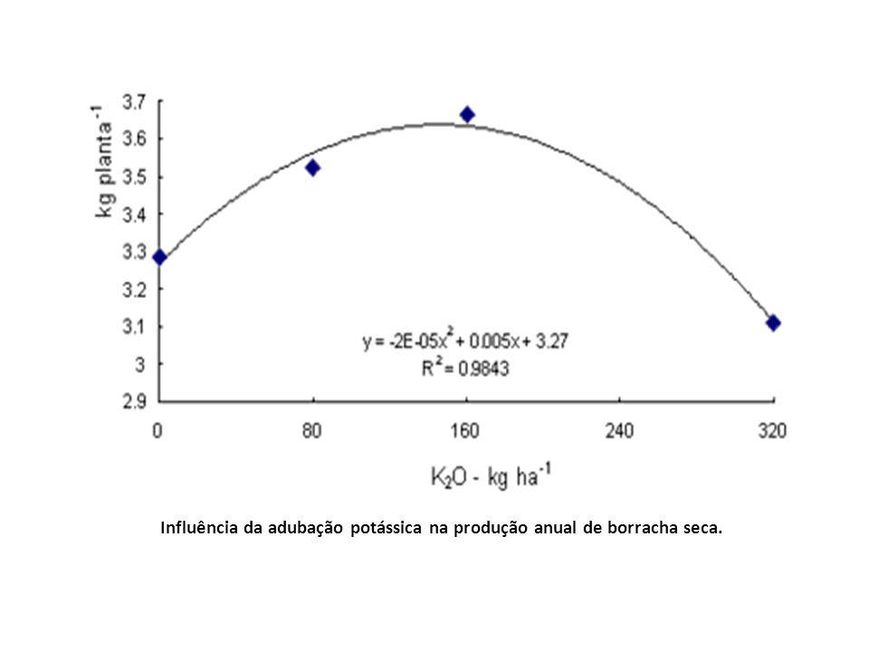 Influência da adubação potássica na produção anual de borracha seca.