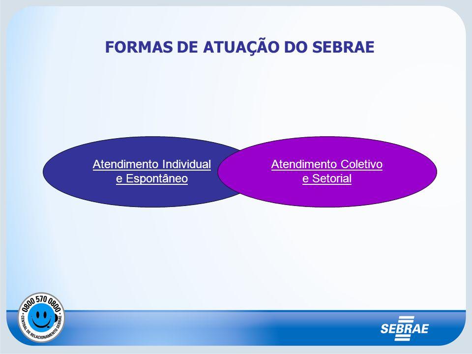 FORMAS DE ATUAÇÃO DO SEBRAE