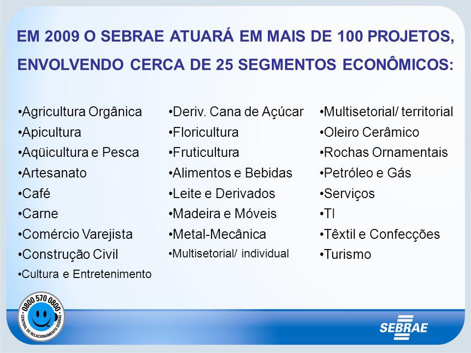 EM 2009 O SEBRAE ATUARÁ EM MAIS DE 100 PROJETOS, ENVOLVENDO CERCA DE 25 SEGMENTOS ECONÔMICOS: