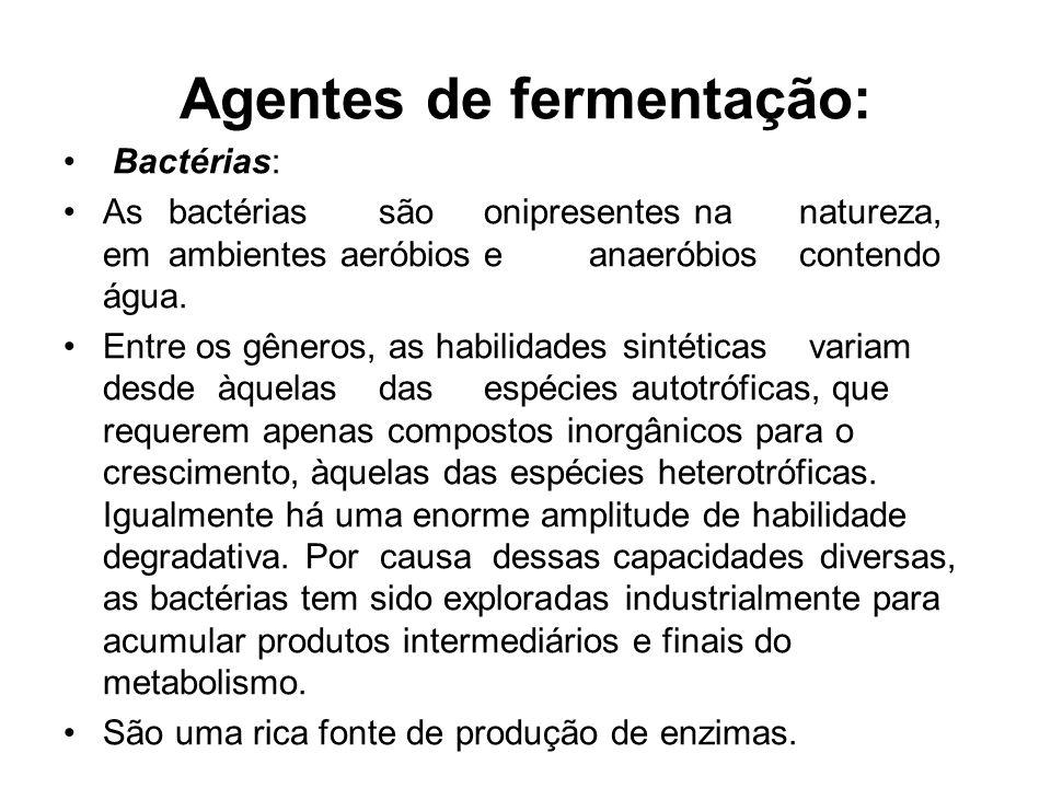 Agentes de fermentação:
