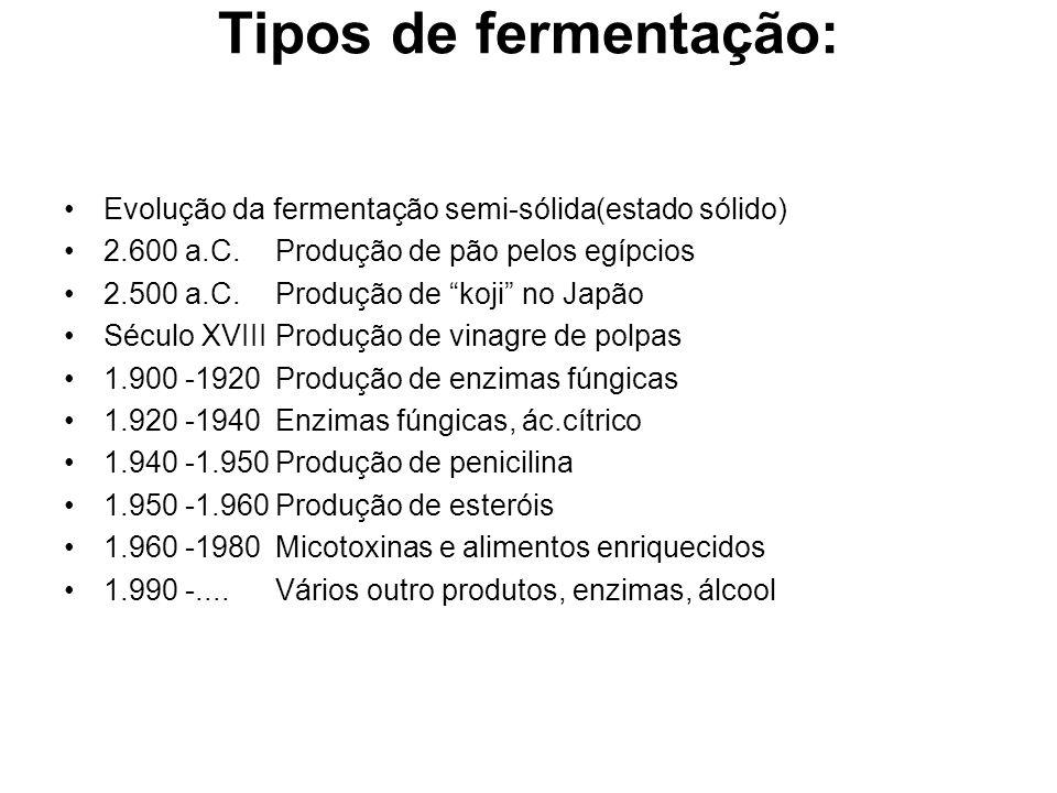 Tipos de fermentação: Evolução da fermentação semi-sólida(estado sólido) 2.600 a.C. Produção de pão pelos egípcios.