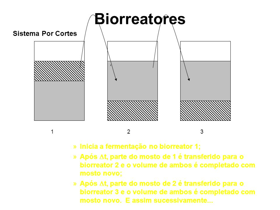 Biorreatores Sistema Por Cortes '