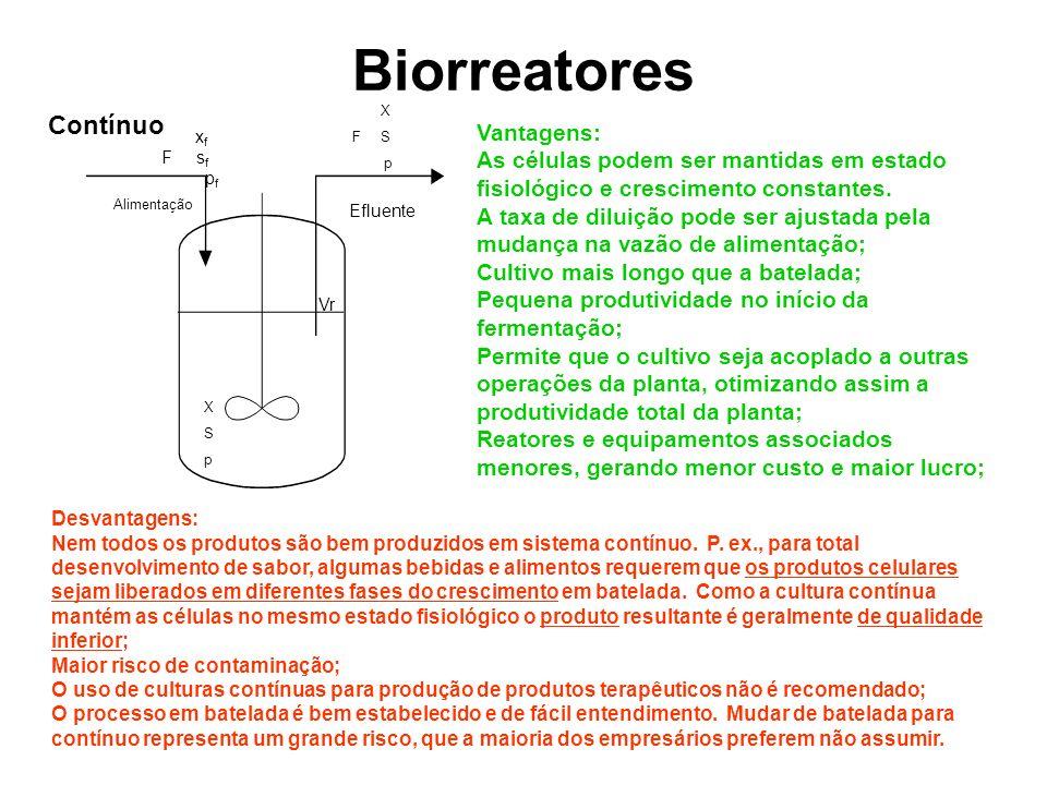 Biorreatores Contínuo Vantagens: