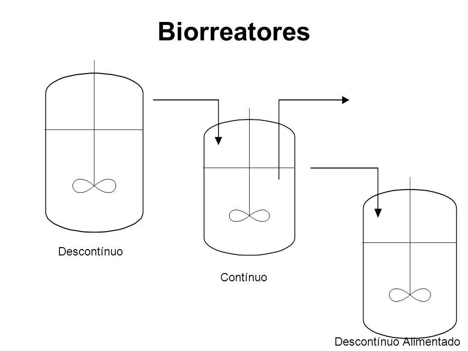 Biorreatores Descontínuo Contínuo Descontínuo Alimentado