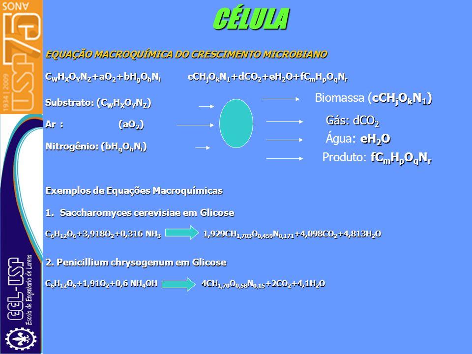 CÉLULA Biomassa (cCHjOkN1) Gás: dCO2 Água: eH2O Produto: fCmHpOqNr