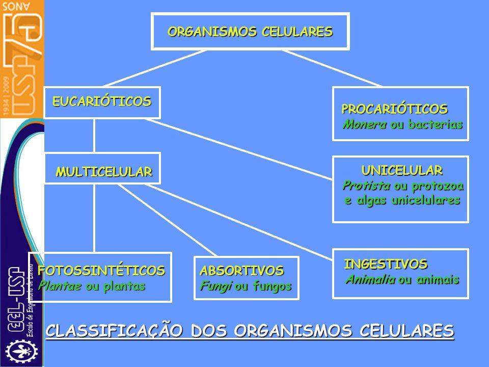 CLASSIFICAÇÃO DOS ORGANISMOS CELULARES