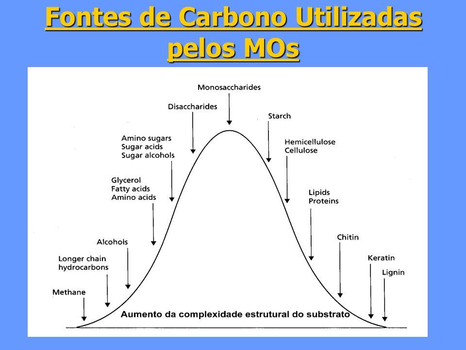 Fontes de Carbono Utilizadas pelos MOs