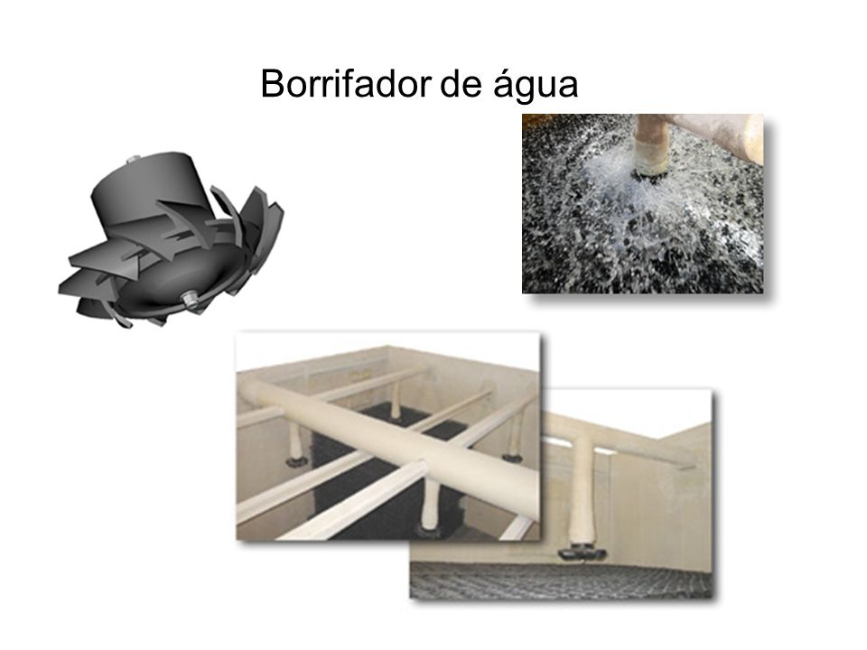 Borrifador de água