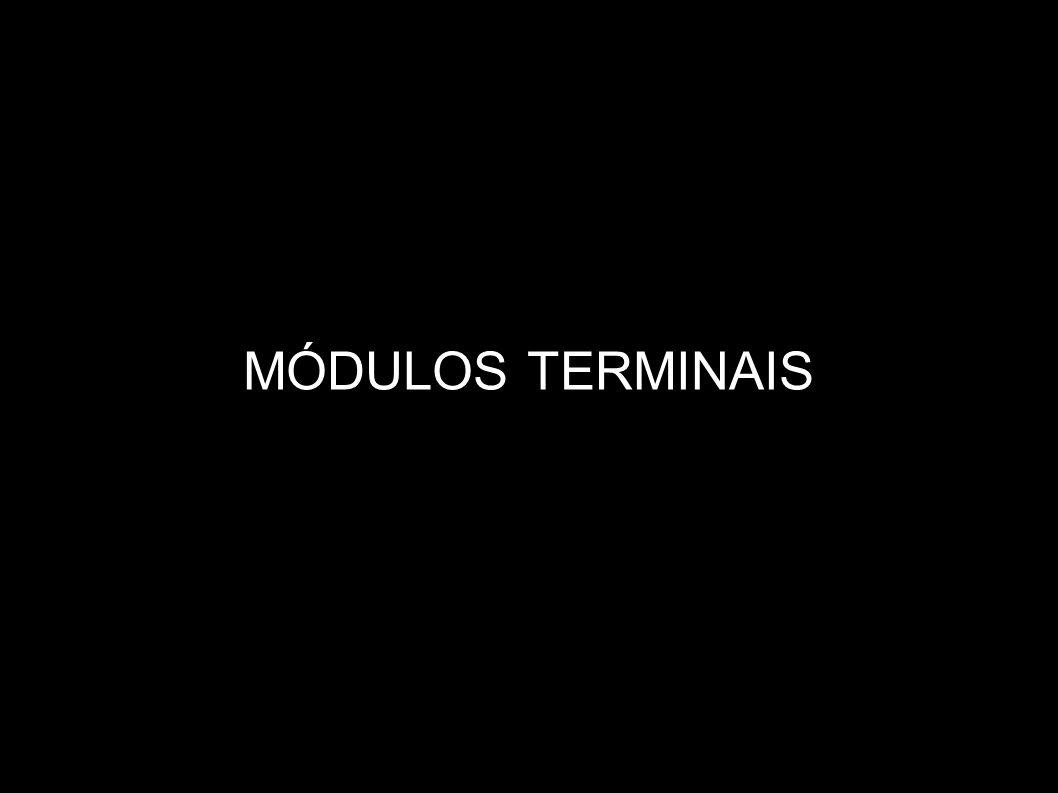 MÓDULOS TERMINAIS