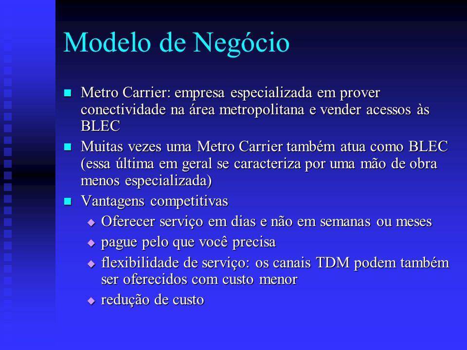 Modelo de Negócio Metro Carrier: empresa especializada em prover conectividade na área metropolitana e vender acessos às BLEC.