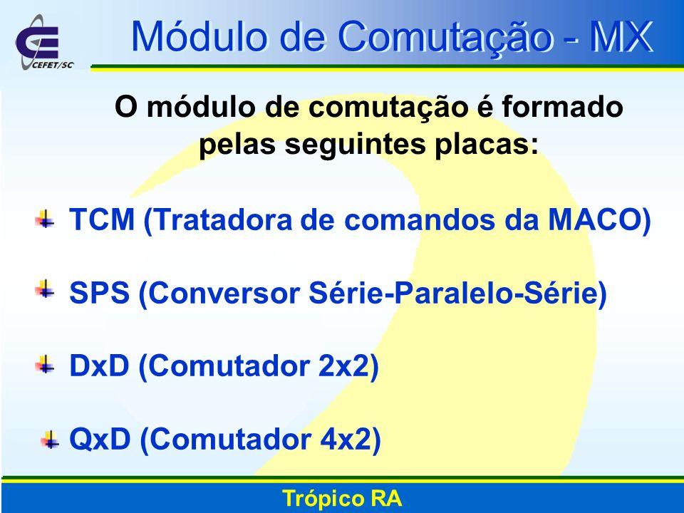 O módulo de comutação é formado pelas seguintes placas: