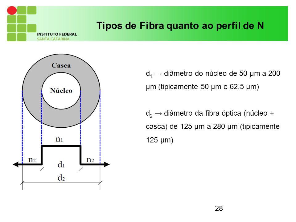 Tipos de Fibra quanto ao perfil de N