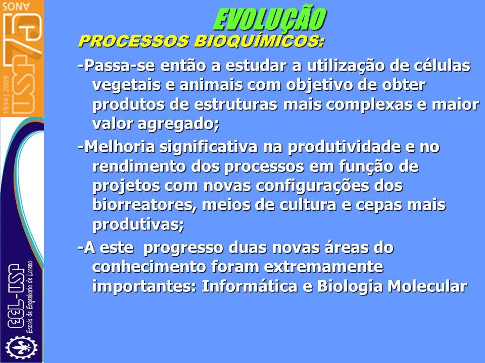 EVOLUÇÃO PROCESSOS BIOQUÍMICOS: