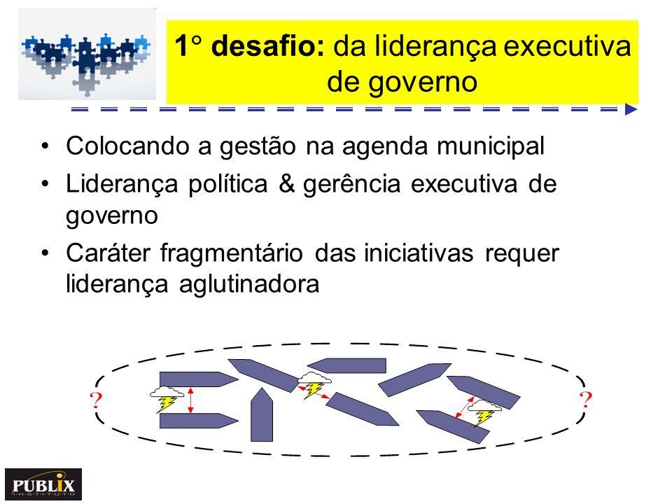 1 desafio: da liderança executiva de governo