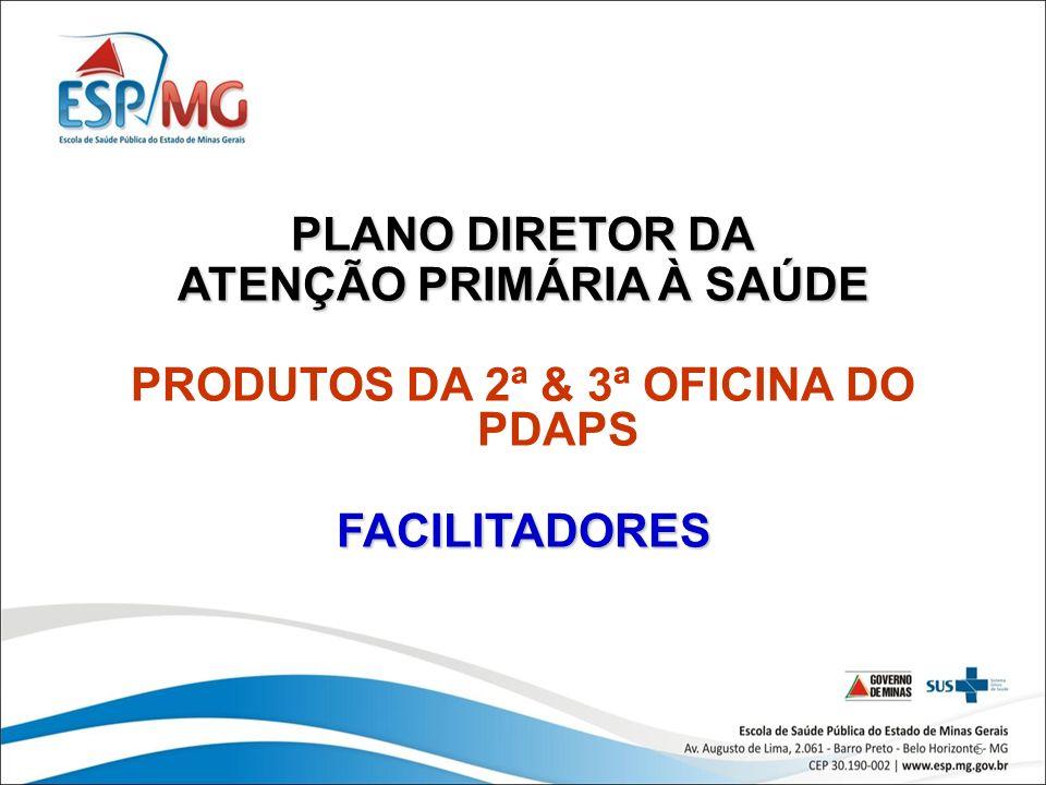 ATENÇÃO PRIMÁRIA À SAÚDE PRODUTOS DA 2ª & 3ª OFICINA DO PDAPS