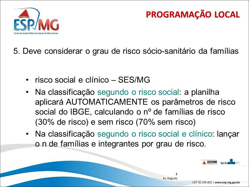 PROGRAMAÇÃO LOCAL Deve considerar o grau de risco sócio-sanitário da famílias. risco social e clínico – SES/MG.