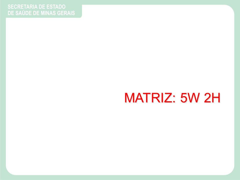 MATRIZ: 5W 2H