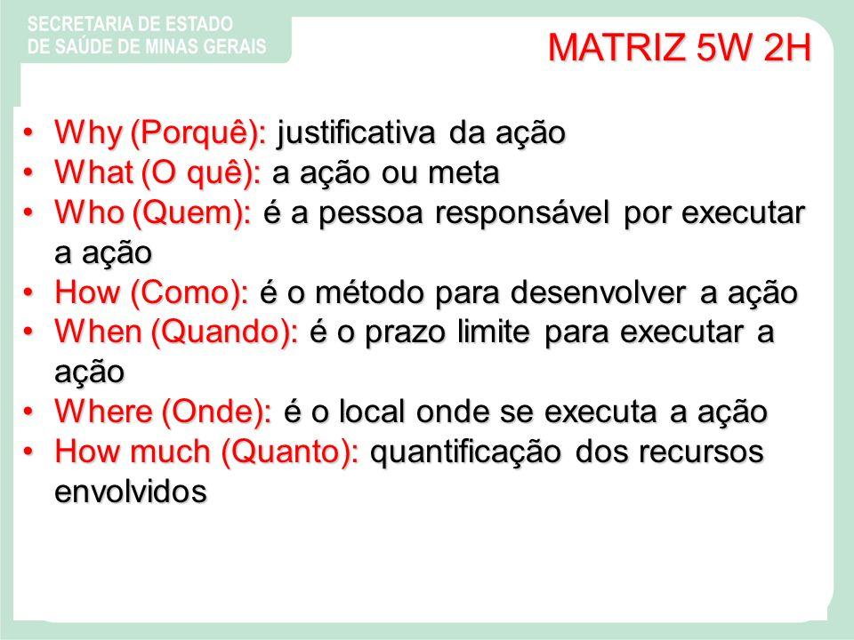 MATRIZ 5W 2H Why (Porquê): justificativa da ação