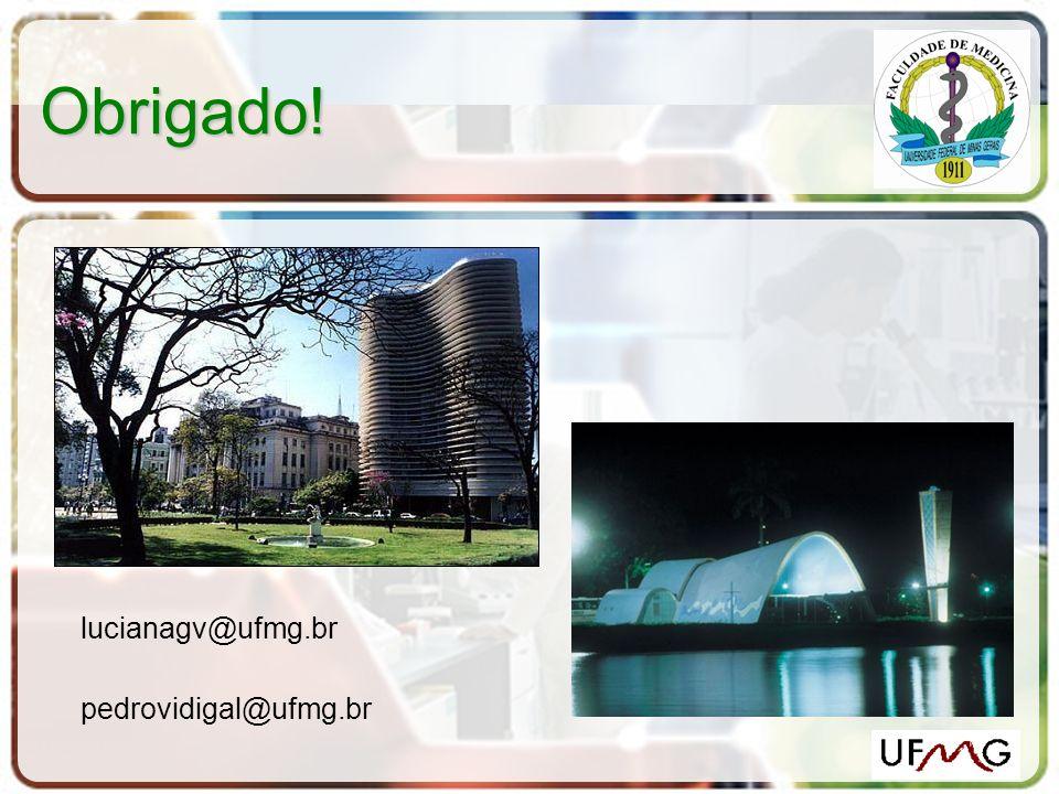 Obrigado! lucianagv@ufmg.br pedrovidigal@ufmg.br