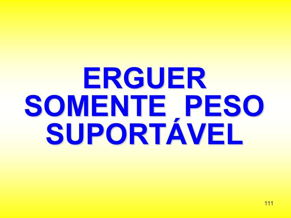 ERGUER SOMENTE PESO SUPORTÁVEL
