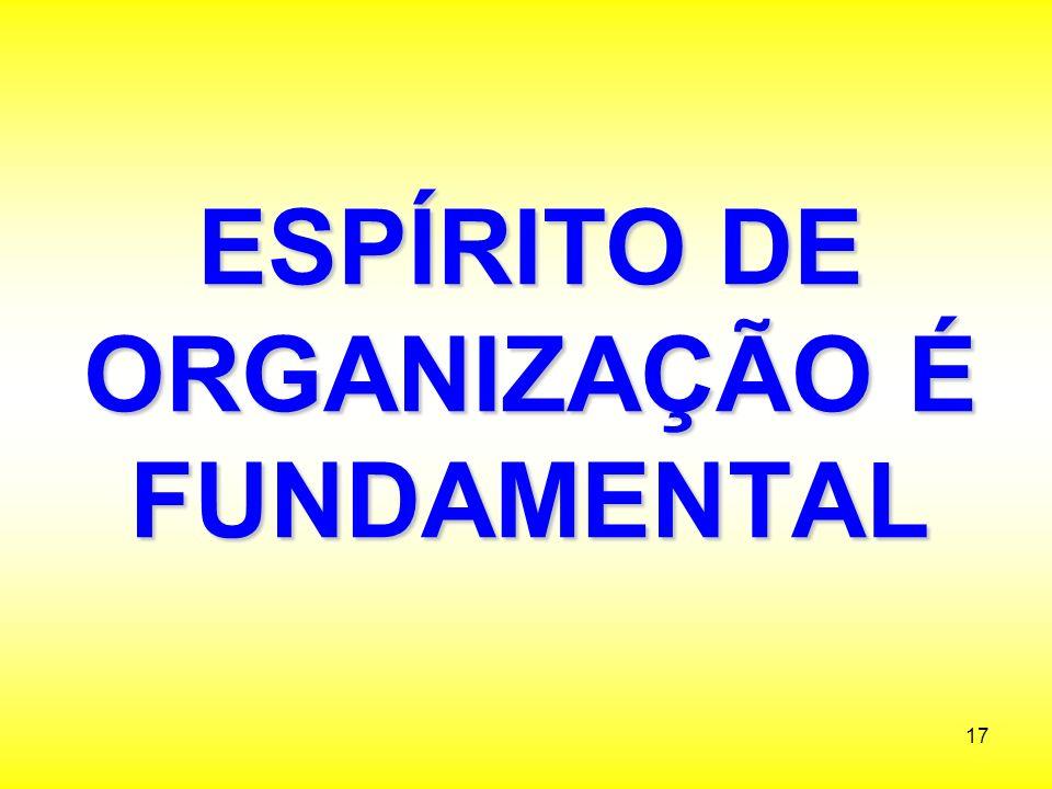 ESPÍRITO DE ORGANIZAÇÃO É FUNDAMENTAL