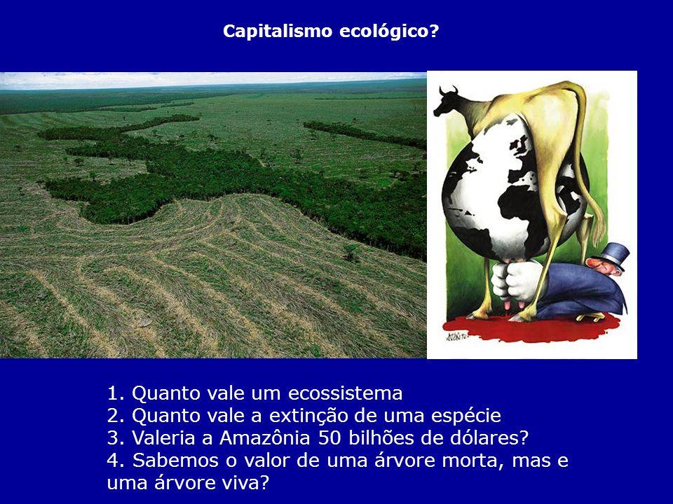 1. Quanto vale um ecossistema 2. Quanto vale a extinção de uma espécie