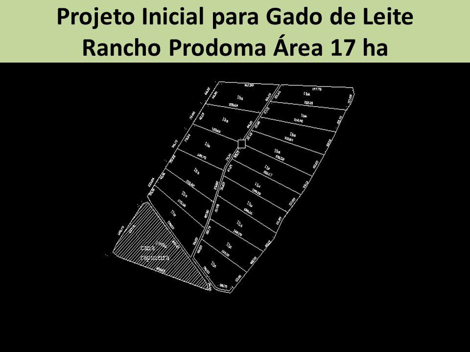 Projeto Inicial para Gado de Leite Rancho Prodoma Área 17 ha