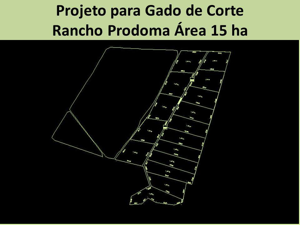 Projeto para Gado de Corte Rancho Prodoma Área 15 ha