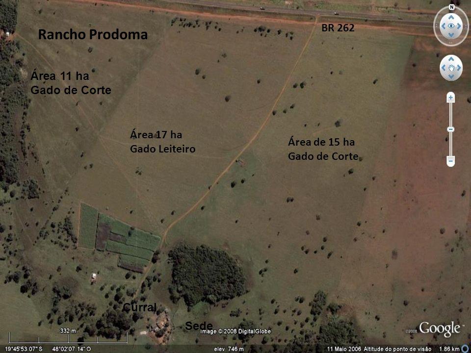 Rancho Prodoma BR 262 Área 11 ha Gado de Corte Área 17 ha