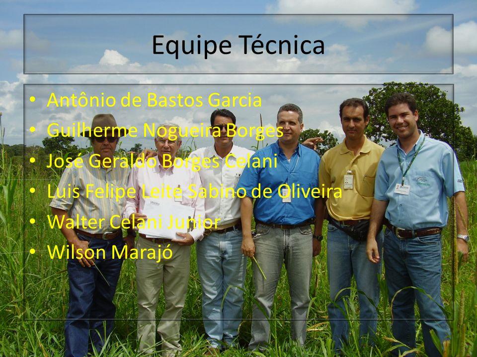 Equipe Técnica Antônio de Bastos Garcia Guilherme Nogueira Borges