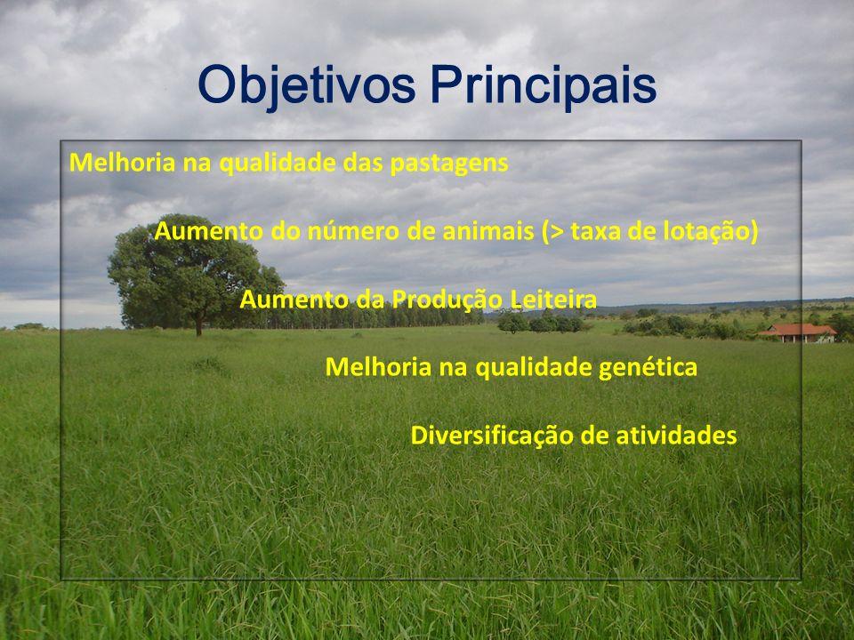 Objetivos Principais Melhoria na qualidade das pastagens