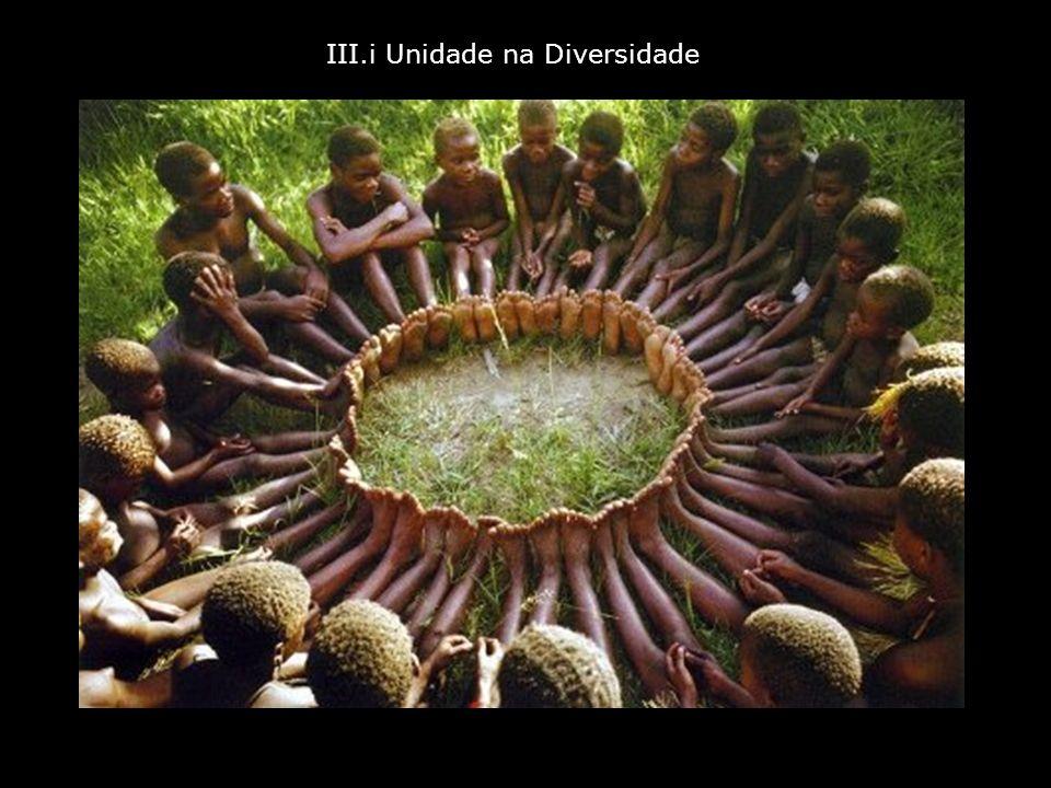 III.i Unidade na Diversidade