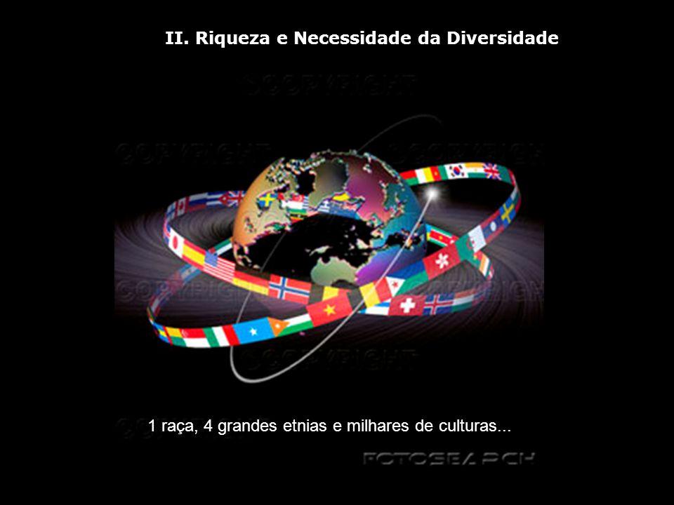 II. Riqueza e Necessidade da Diversidade