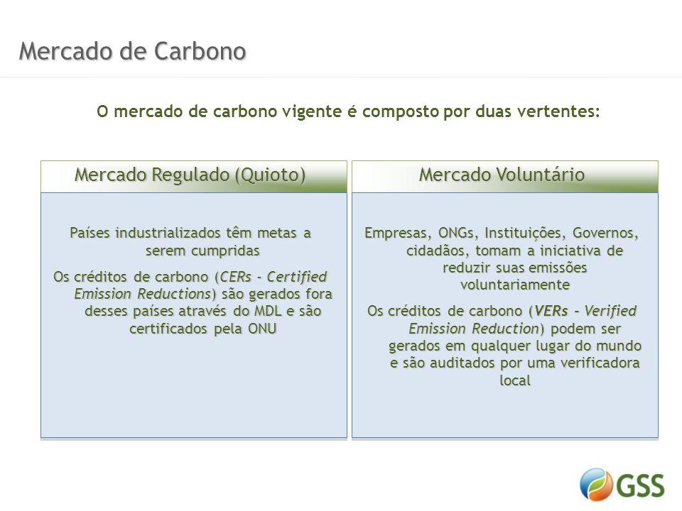 O mercado de carbono vigente é composto por duas vertentes: