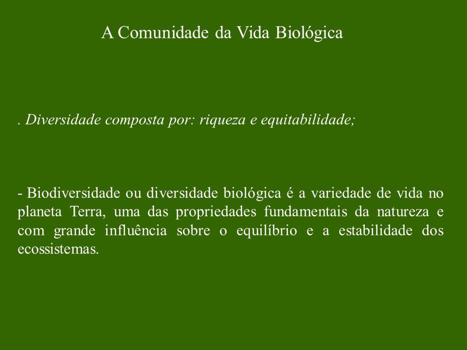 A Comunidade da Vida Biológica