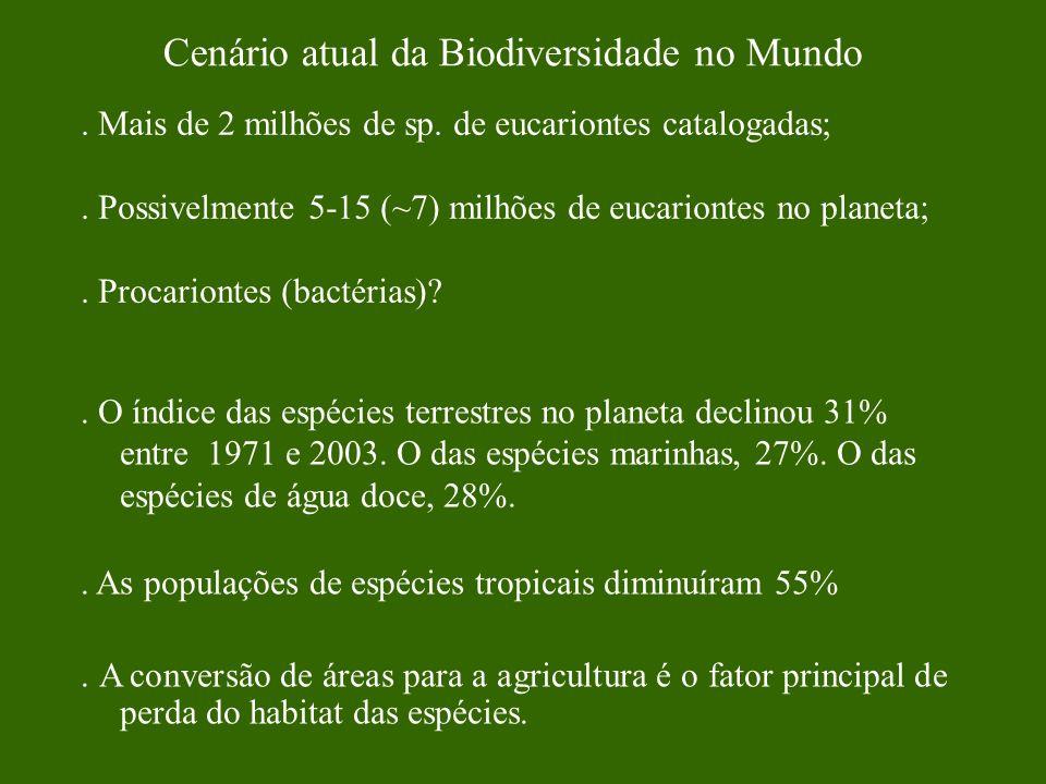 Cenário atual da Biodiversidade no Mundo