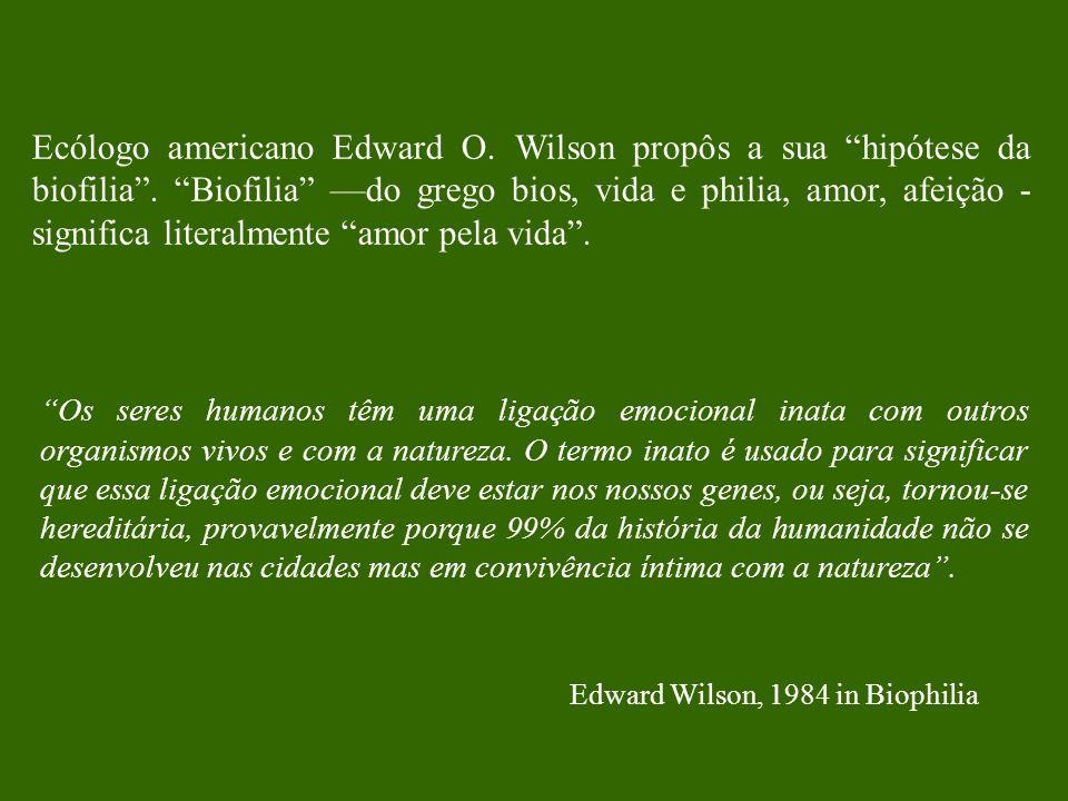 Ecólogo americano Edward O. Wilson propôs a sua hipótese da biofilia