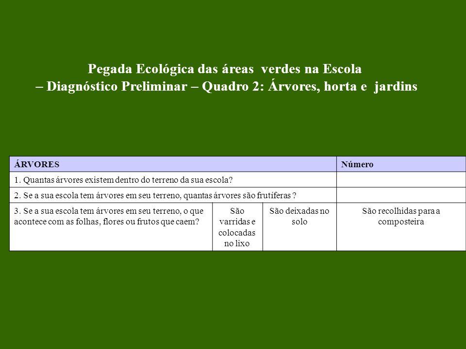 Pegada Ecológica das áreas verdes na Escola