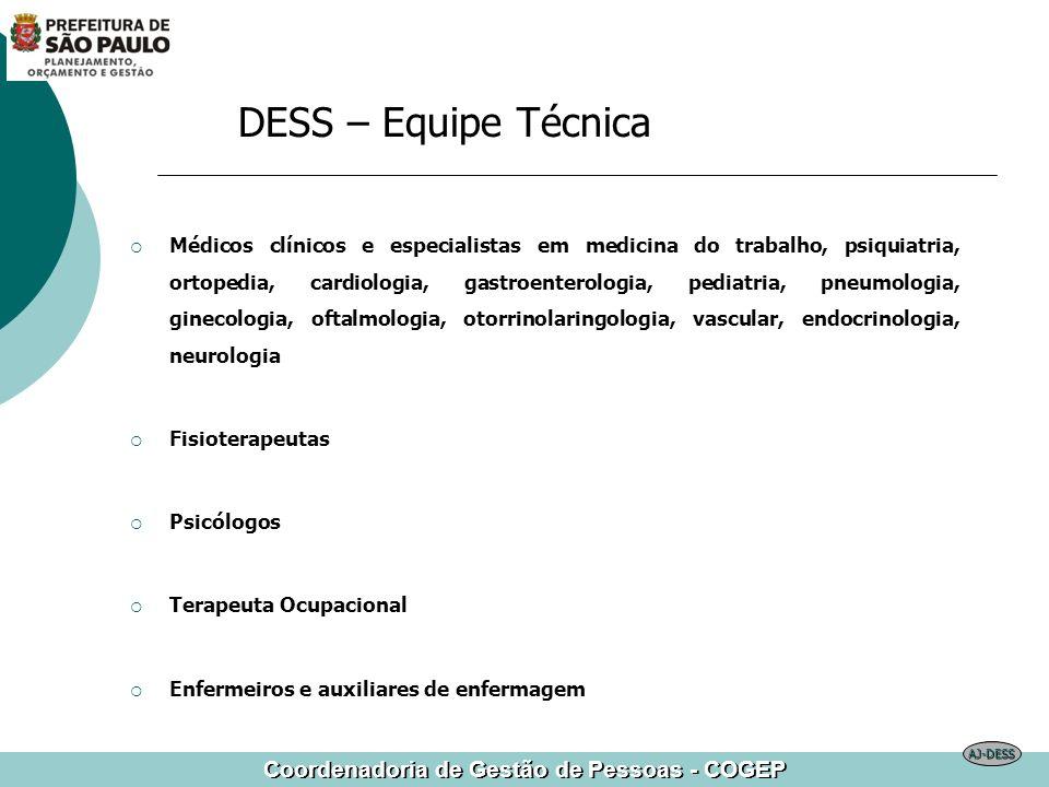 DESS – Equipe Técnica