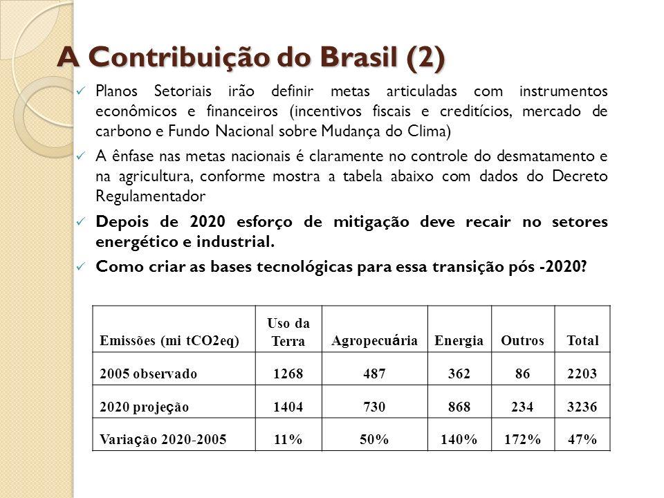 A Contribuição do Brasil (2)
